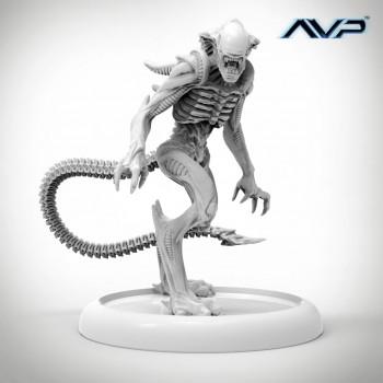 AVP Alien Royal Guard