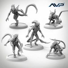 AVP Alien Warriors