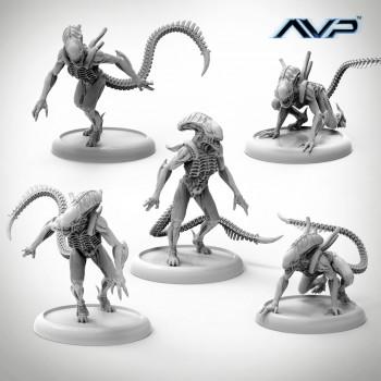 AVP Alien Warriors
