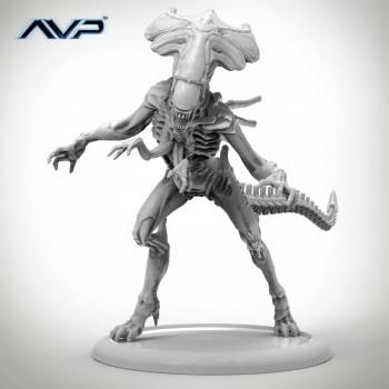 AVP Alien Queen
